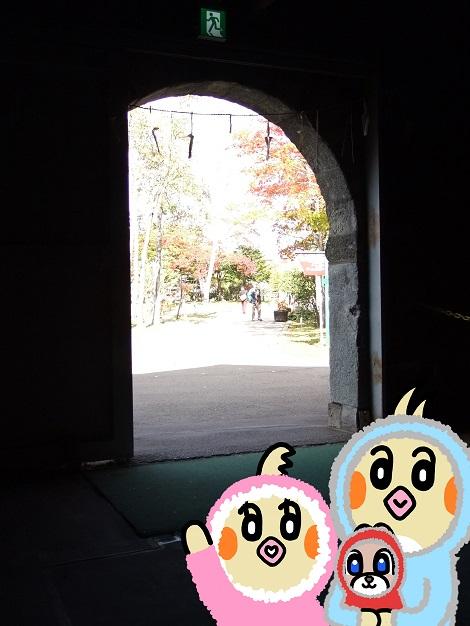 1号貯蔵庫を見学しているピヨめぐモカ2.jpg