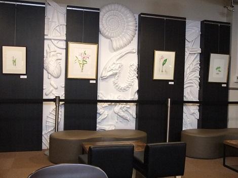 カフェの壁は芸術的だったよ.JPG