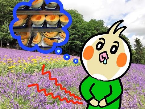 メロンが食べたいピヨ ファーム富田 とみたメロンハウス.jpg