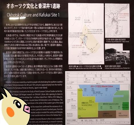 北海道大学総合博物館 15-1.jpg