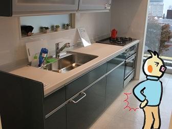 台所が低くて腰の痛いピヨ.jpg
